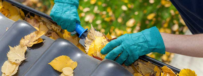 Autumn Plumbing Tips: Get your Drains Ready for Winter