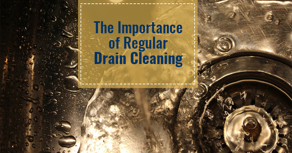 The Importance of Regular Drain Cleaning | Infographic